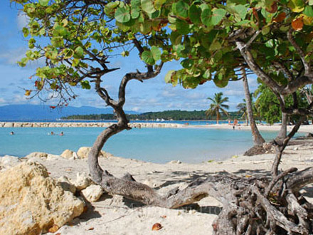 The beach of the holiday rental Villa at Sainte-Anne ,Guadeloupe