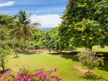 The garden of the holiday rental Villa at Sainte-Anne ,Guadeloupe